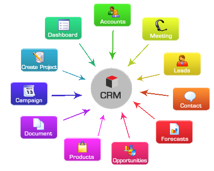 Best crm software development company in lucknow