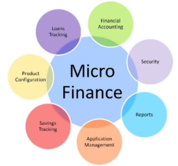 microfinance software in Lucknow